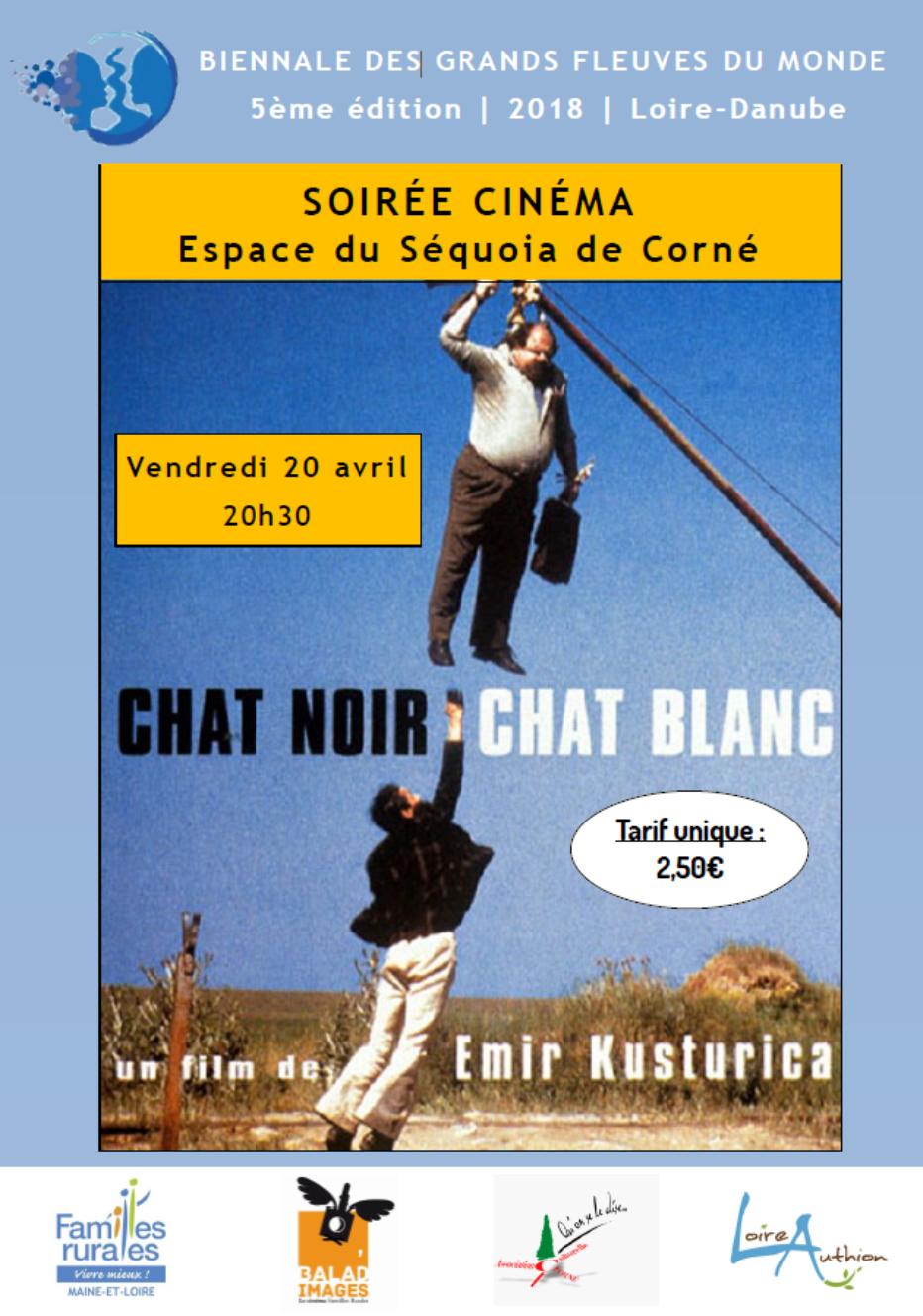 Ciné-débat   CHAT NOIR, CHAT BLANC